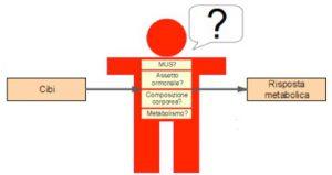 Grafico Metabolismo